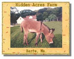 Hidden Acres Logo (8642 bytes)