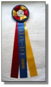 Champion Very Small Equine Division!