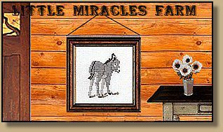 Little Miracles Farm