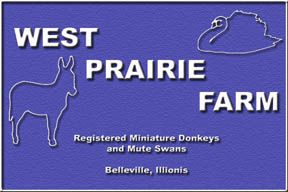 West Prairie Farm ~ Belleville, Illinois